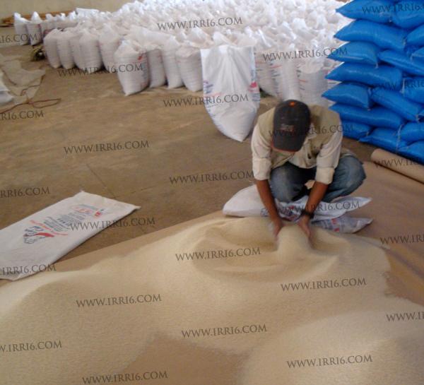 Pakistan Rice of SGS Inspection