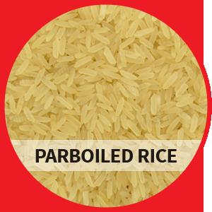 Pakistan Parboiled Rice, Long Grain, IRRI6