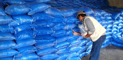 Pakistan Rice Export Market