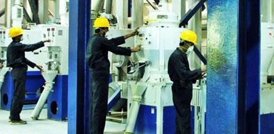 Rice Mills Pakistan Rice Suppliers